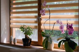 Window Treatments North Metro Atlanta GA/Kennesaw GA